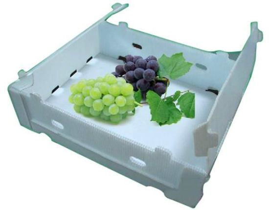 PP Collapsible Corrugated Plastic Food Garde Packing Box