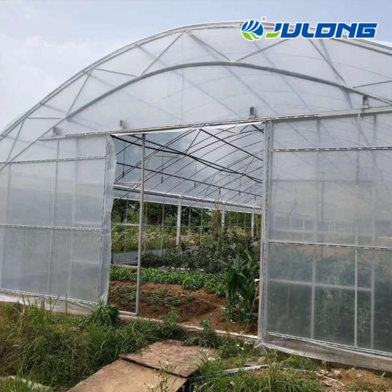 Agricultural Low Cost Greenhouse with Ventilation System Used Planting Vegetable Flowers Tomato