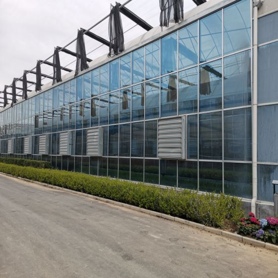 Agriculture Low Cost Smart Glass Greenhouse