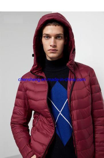 Stock Garment Men Outdoor Winter Light Down Cotton Jacket with Hoodie