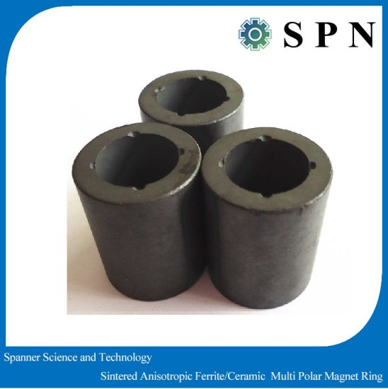 Permanent Magnet Ferrite Multipole Sintered Anisotropic Rings pictures & photos