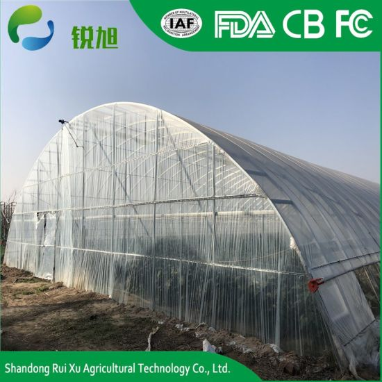 Low Cost Agriculture Plastic Film Greenhouse pictures & photos