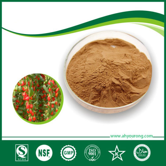Goji Berry Extract, Plant Extract, Herbal Extract, Natural Extract
