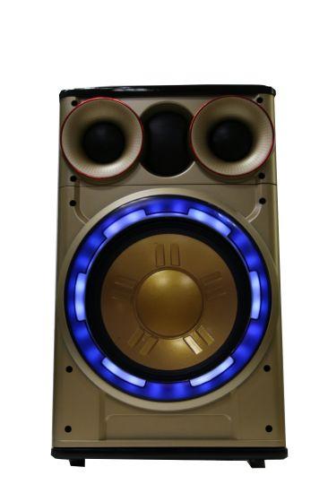Shinco 12 Inches Bluetooth Wireless Multimedia Active Prefessional Speaker