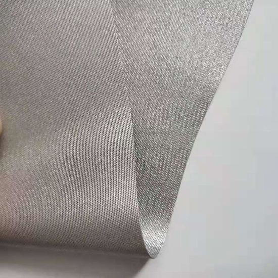 Polyester Taslan Fabric with PU/PVC Coating/Taslan Polyester Fabric/Taslan Fabric