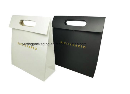 China Recyclable Elegant Design Folding Packaging Bags Craft Paper