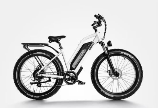 CE Approval Electric Bicycle 250W Lithium Bike pictures & photos