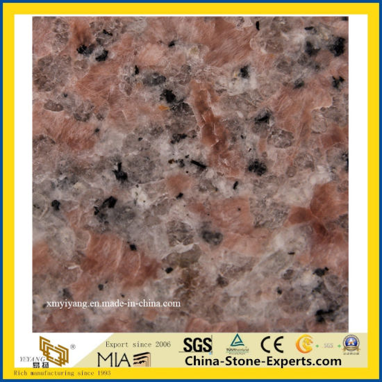 Hot Sale China Red Granite Floor Tile for Floor & Wall pictures & photos