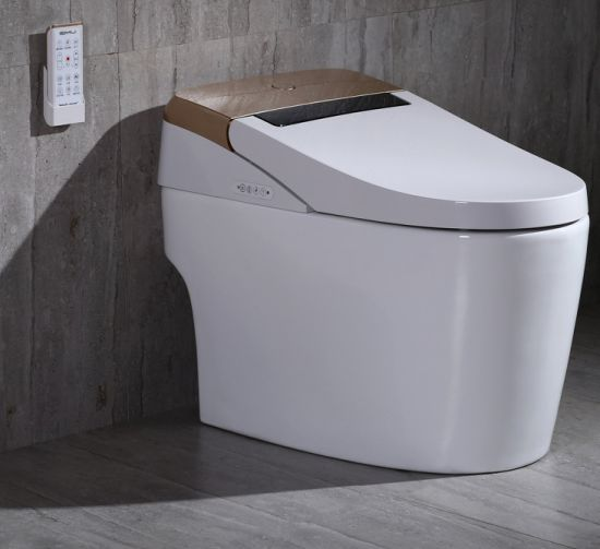 Water Closet with Heating Seat