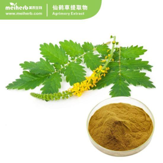 2017 New Arrival Agrimory Extract / Agrimory P. E. / Agrimonia Pilosa Extract Powder