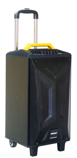 12 Inch Trolley Portable Wooden Bluetooth Speaker