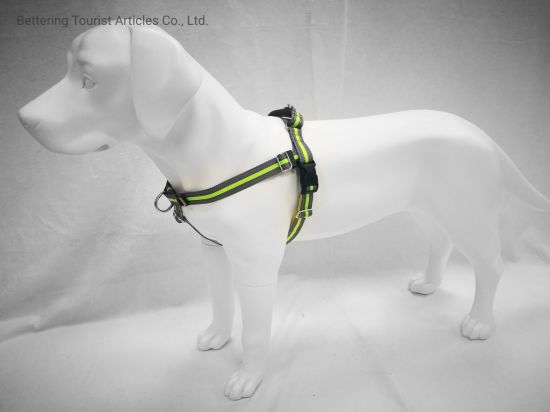 Green Strong Reflective Dog Harness