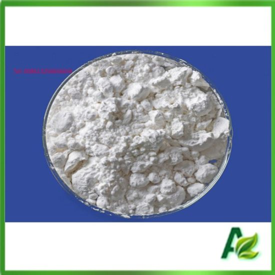 Coated Animal Feed Additive Sodium Butyrate Powder Price pictures & photos