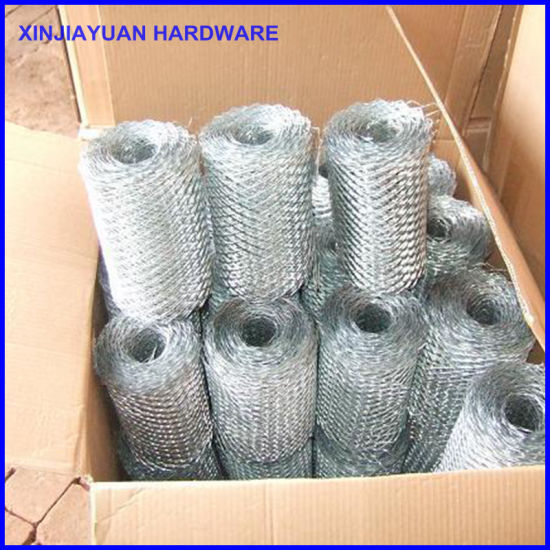 Construction Reinforcement Brick Coil Mesh pictures & photos