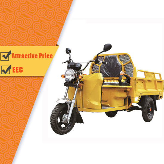 Ce/EEC/Certified Electric Trike Electric Cargo Tricycle