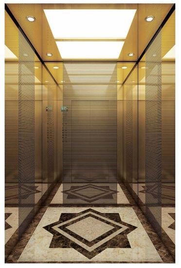 Vvvf Passenger Home Panoramic Cargo Observation Residential Elevator (16K003)