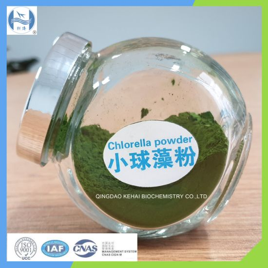 Chlorella Powder to People for Protein pictures & photos