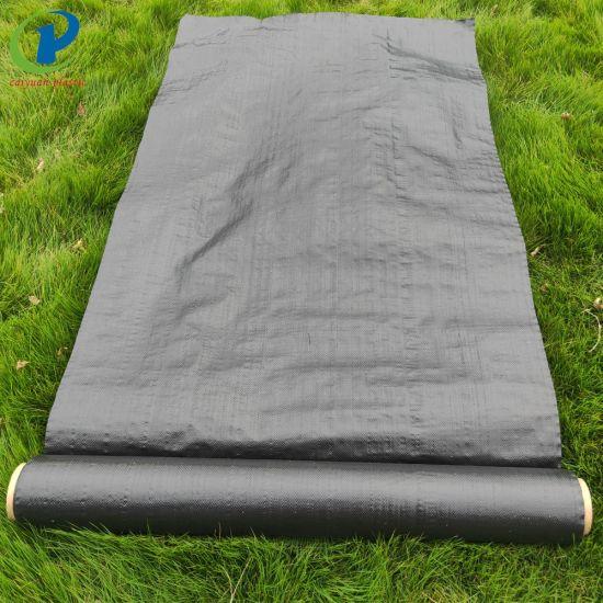 Polypropylene Landscape Fabric Over Grass
