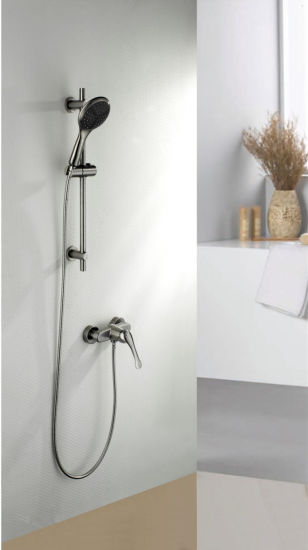 Stainless Steel Bathroom Hand Held Shower with Watermark Certificate pictures & photos