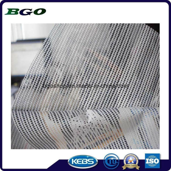 Printing Canvas Mesh Fabric PVC Mesh Banner (1000X1000 12X12 370g) pictures & photos