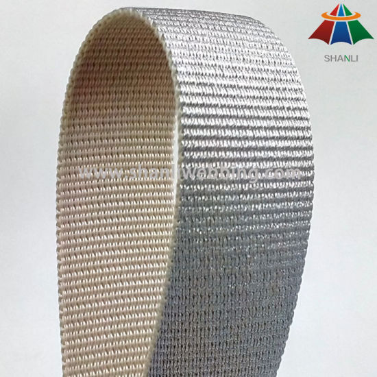 38mm PP Webbing with Silver Wire