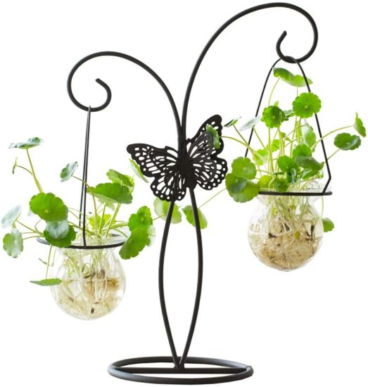 Decoration Creative Small Fresh Green Water Hydroponic Plant Glass Bottle Metal Iron Flower Vase