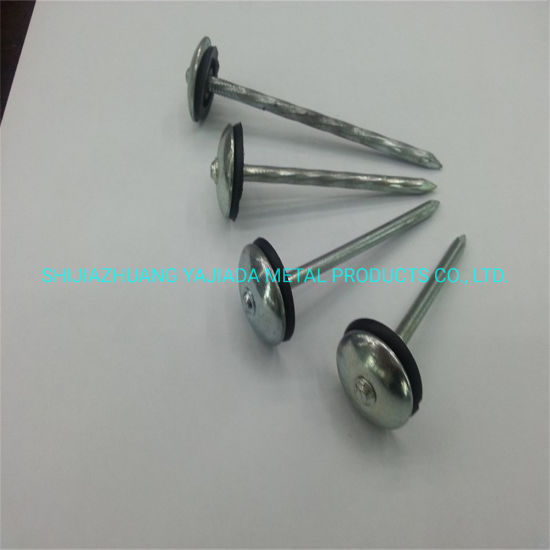 Twisted Shank Galvanized Roofing Nails