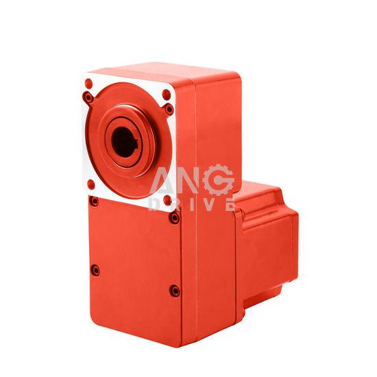 12V 24V 48V Flat L Parallel Shaft Type DC BLDC Gear Motor