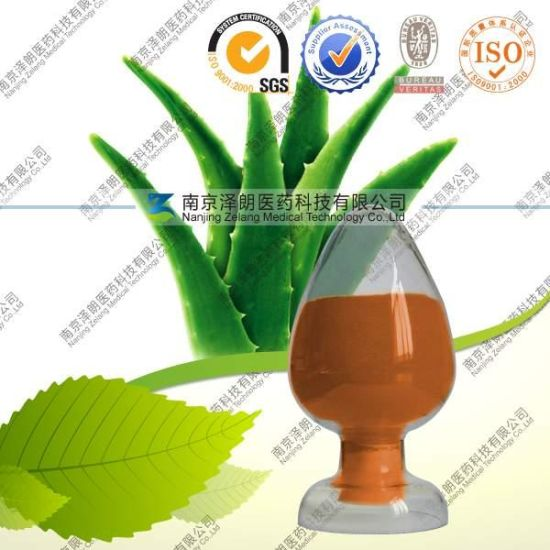 Natural Powder Aloe Vera Extract pictures & photos