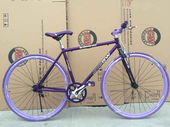 Hot Sales Fix Gear Mountain Bicycle