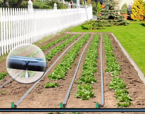 Irrigation System Cylindrical Drip Line Agricultural Irrigation