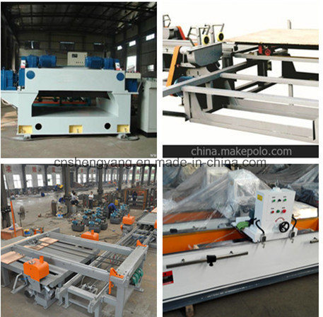 China Woodworking Plywood Production Line pictures & photos