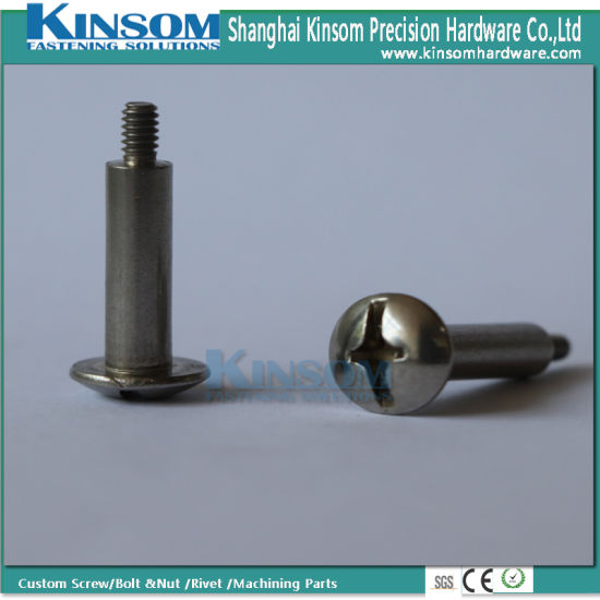 Stainless Steel 316 Bolt Phillips Pan Head Special Bolts with Polishing Plain Surface