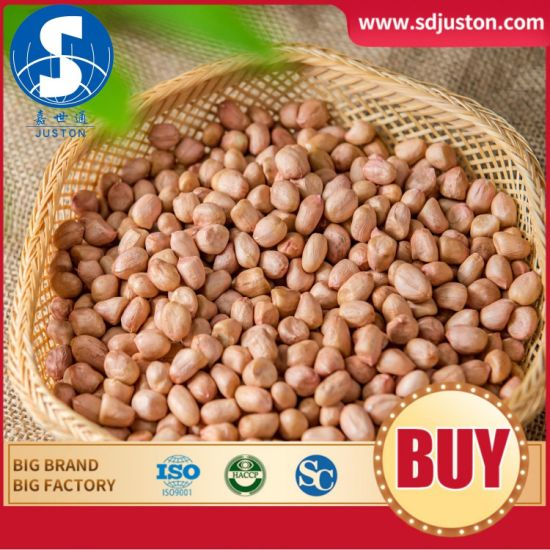 2020 Crop Blanched Peanut Kernels White Skin Peanut Kernels Fr O M China pictures & photos