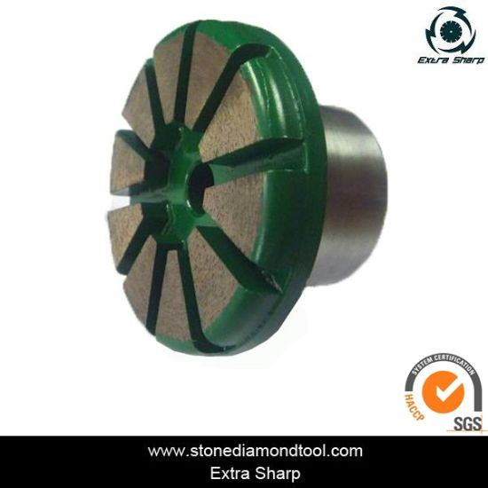 Diamond Concrete Floor Plug for Coating Removal pictures & photos