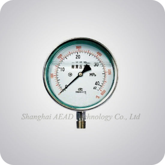 Dia 100 All Stainless Steel Pressure Gauge
