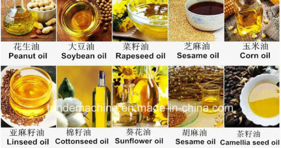China Peanut Oil Extraction Machine Price Groundnut Oil
