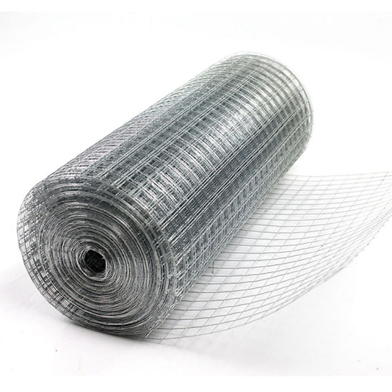 China Premium Galvanized Welded Wire Mesh for Construction and Fence ...