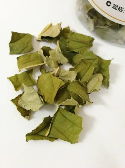 High Quality Organic Health Herbal Tea Lotus Leaf Tea