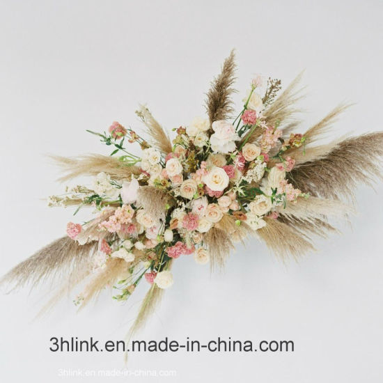 China Natural Dried Pink Pampas Grass For Home Decor Wedding Decor China Pampas Grass And Pampas Grass Wedding Price