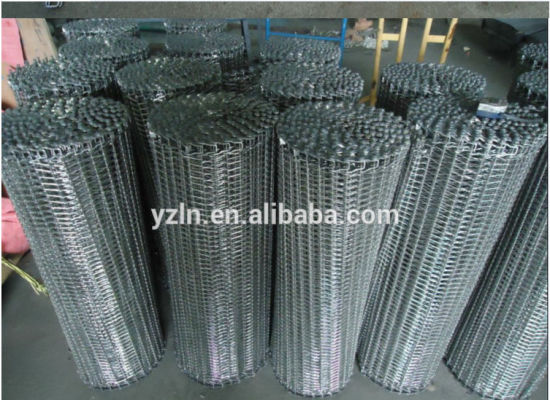 Stainless Steel Conveyor Belt for Freezering Food Processing pictures & photos