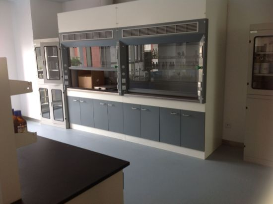 Full Steel Fume Hood Factory Direct Sales Laboratory Fume Cupboards pictures & photos