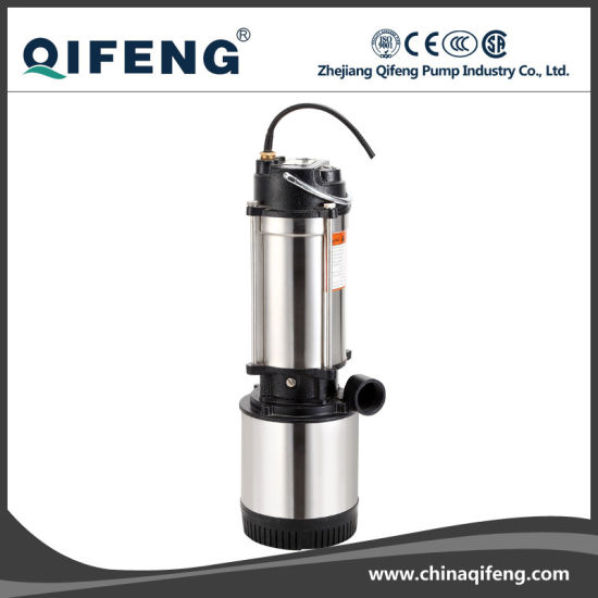 Garden Stainless Steel Motor Shell Clarified Water Pump with Float