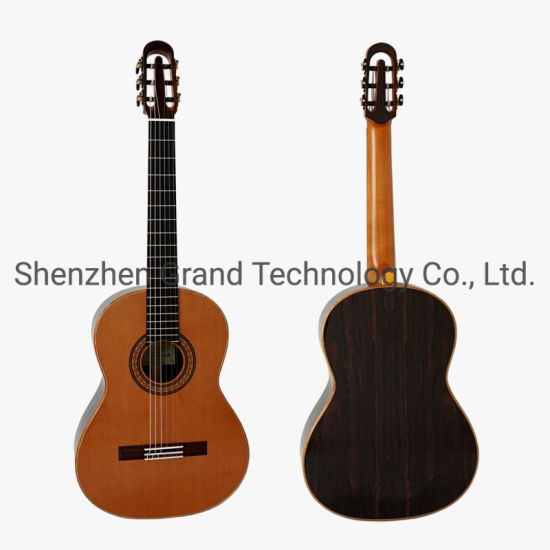 Yulong Guo a-Echoes Brand All Solid Nomex Double Top Nylon Strings Classic Guitar String Scale 650mm