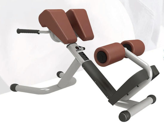 Lzx Fitness Equipment Roman Chair Used for Home /Gym/Club