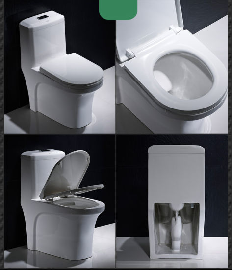 Lp1007 Chinese Bathroom Sanitary Ware Siphonic One Piece Portable Toilet
