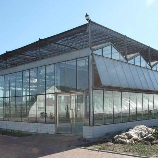 Low Cost Multi-Span Custom Tempered Glass Greenhouse for Garden