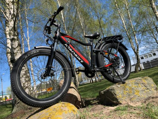 Fat Tire Electric Bike with Good Price pictures & photos