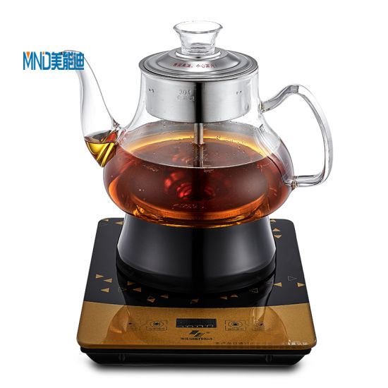 Multi-Function Steam Cooking Type Electric Tea Kettle with Tray