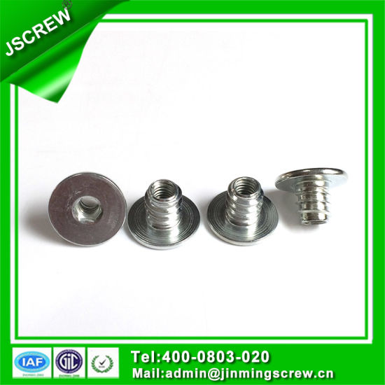 Customized Flat Head Threaded Nuts for Furniture pictures & photos